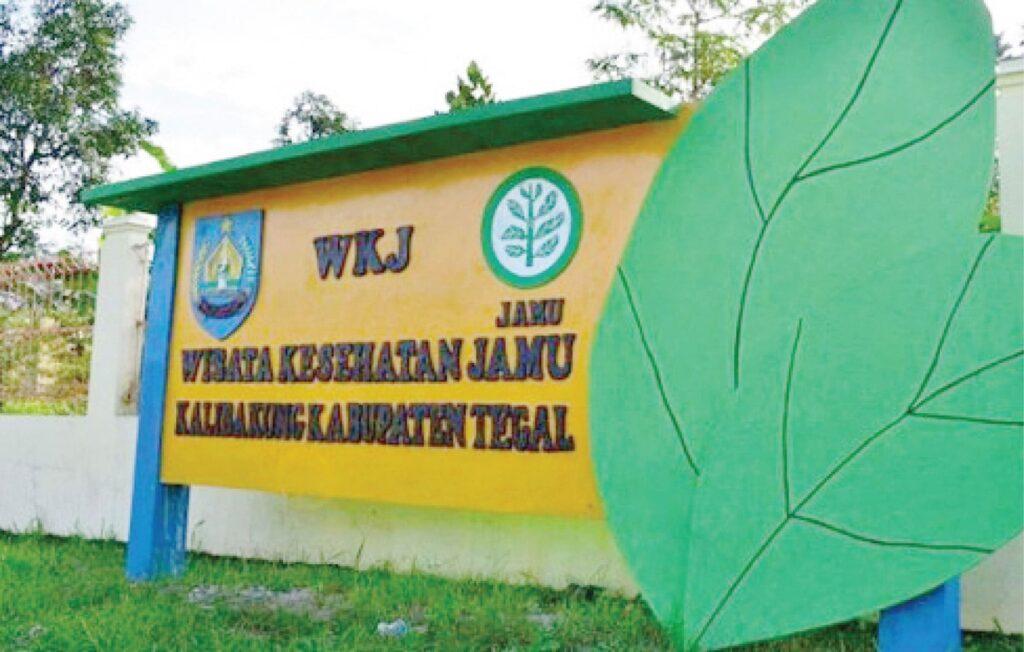 Indonesia Promosikan Destinasi Wisata Kesehatan
